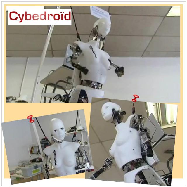 Le robot Ariell Cybedroïd